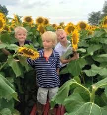 Grinter Tips For A Trip To Grinter Farms Kansas City Moms Blog