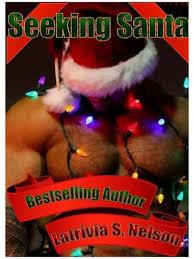 Seeking Santa Seeking Santa Mr December By Latrivia S Nelson