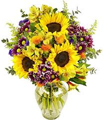 Flowers Delivered With Vase Amazon Com Benchmark Bouquets Flowering Fields With Vase