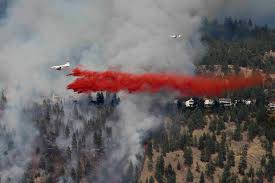 Bc Wildfire Interface by Forest Practices Board Not Enough Being Done To Prevent Wildfires