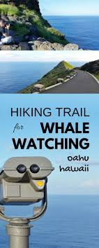 5150 best hawaii outdoor travel images on destinations