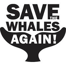 save the the whaleman foundation