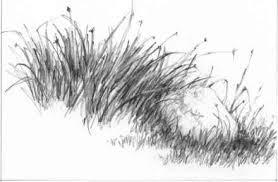 barns grass rocks and water drawing nature joshua nava arts