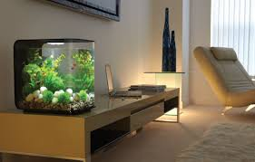 kitchen fish tank zolt us