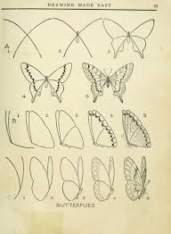 25 unique how to draw butterfly ideas on pinterest easy