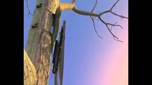 Tree Trunk Hunting Blind Deer Hunting Ground Blind Vs Tree Stand Youtube