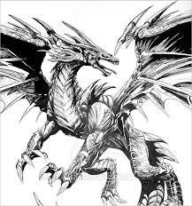 dragon pencil drawing sketches free u0026 premium templates