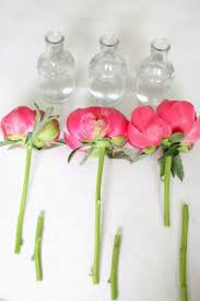Peony Floral Arrangement 85 Best Flowers Crafts Images On Pinterest Marriage Crafts And