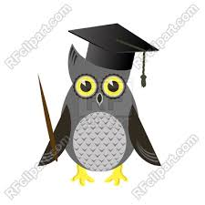 graduation cap owl bird with graduation cap isolated on white background