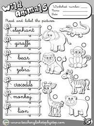 9 best worksheets images on pinterest printable worksheets wild