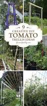 484 best garden trellis u0026 structures images on pinterest