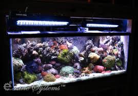 sb reef lights review stark led review aquarium article digest