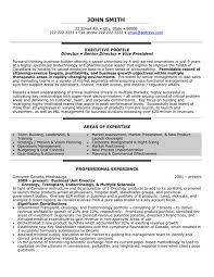 Resume Samples For It Professionals by 13 Best Best Multimedia Resume Templates U0026 Samples Images On