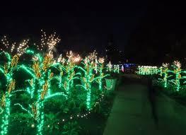 light show in atlanta botanical gardens light show dunneiv org