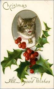 15 amazing christmas cards with cats kitty bloger