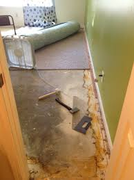 house flooded pad stunk indianapolis carpet repair to the rescue