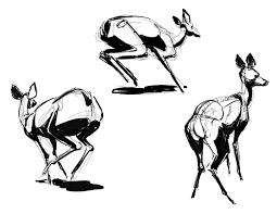 martin wittig deer sketches finally new art right