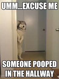 I Pooped Today Meme - help i pooped my pants gallery ebaum s world