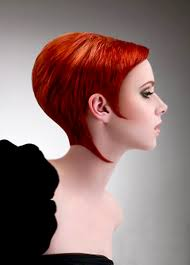short haircut with ear showing pictures of short hair color short hairstyles 2016 2017 most