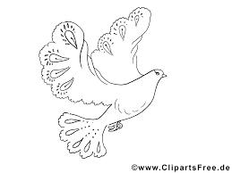 Dessin colombe  Coloriage pentecôte à télécharger  Pentecôte