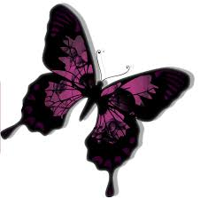 skull designs to butterfly