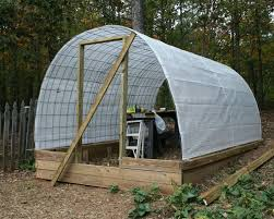 a tiny homestead building a permanent greenhouse with cattle
