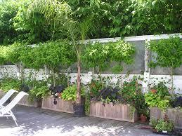 Window Boxes Planters by Big Rectangular Teak Planter Boxes Diamondtropicalhardwoods Com