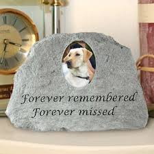 when a pet dies memorials funeral and cremation archive pet