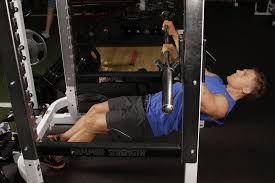 Bench Barbell Row Exercises Your Personal Trainer Page 16 Of 21