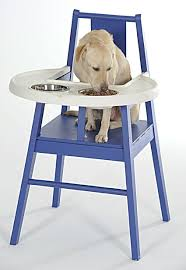 16 best highchairs for dogs images on pinterest high chairs dog