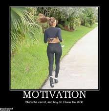 Funny Encouraging Memes - motivation jpg