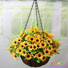 cheapest flowers china cheapest outdoor flowers china cheapest outdoor flowers