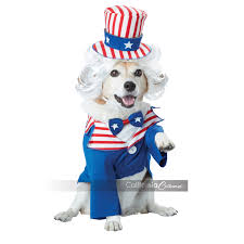 uncle sam dog costume by california costumes with same day
