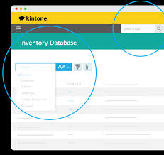 kintone online database