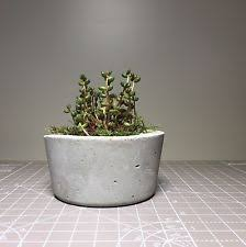 large indoor planter pots wall mounted flower halls indoor and