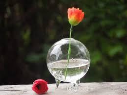 Miniature Flower Vases Set Of 3 Japanese Moss Ball Aquarium Marimo Terrarium