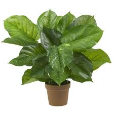 silk plants nearly real touch 27 in h green large leaf philodendron