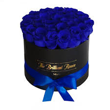 blue roses the brilliant eternity blue roses in flower box the