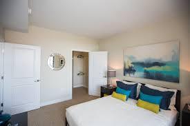 one bedroom apartments pet friendly luxury pet friendly apartments in noma apartminty