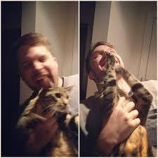 Cat Beard Meme - a brief history of catbearding the most popular meme on instagram