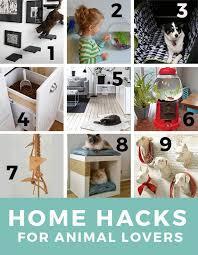 best diy home design blogs 24 best my best design tips images on pinterest blog designs blog
