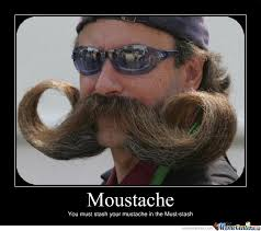 Funny Mustache Memes - moustache by loupland meme center