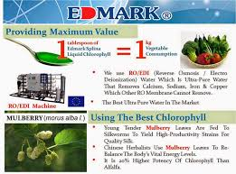 take back your health edmark splina liquid chlorophyll