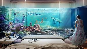chambre aquarium les villas flottantes avec chambre sous marine font un tabac à dubaï