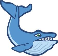 clipart of a whale