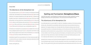 spelling and punctuation homophone chaos activity sheet