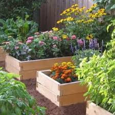 Ideas For Herb Garden 10 Easy Kitchen Herb Garden Ideas To Grow Culinary Herbs