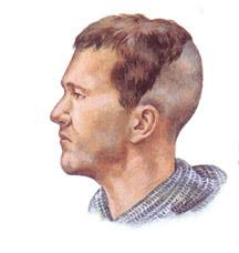 Viking Anglo Saxon Hairstyles | anglo saxon and viking people wore their hair long and were often