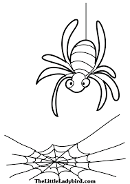 free animals coloring pages thelittleladybird com
