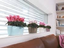self watering window planters self watering flower pots